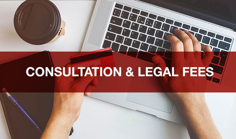 Consultation and Legal Fees
